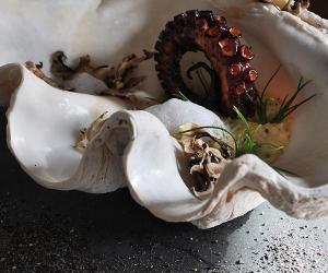 Sophisticated octopus dish served in a seashell