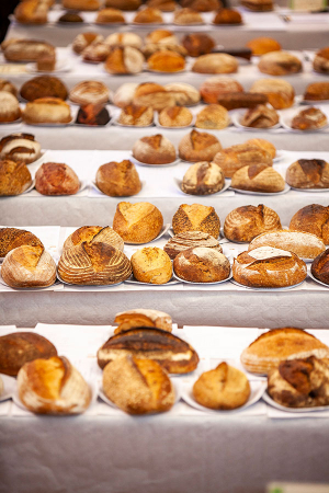 Sourdough loaves at the World Bread Awards judging