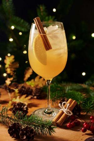 Bardinet brandy pomme canelle spritz