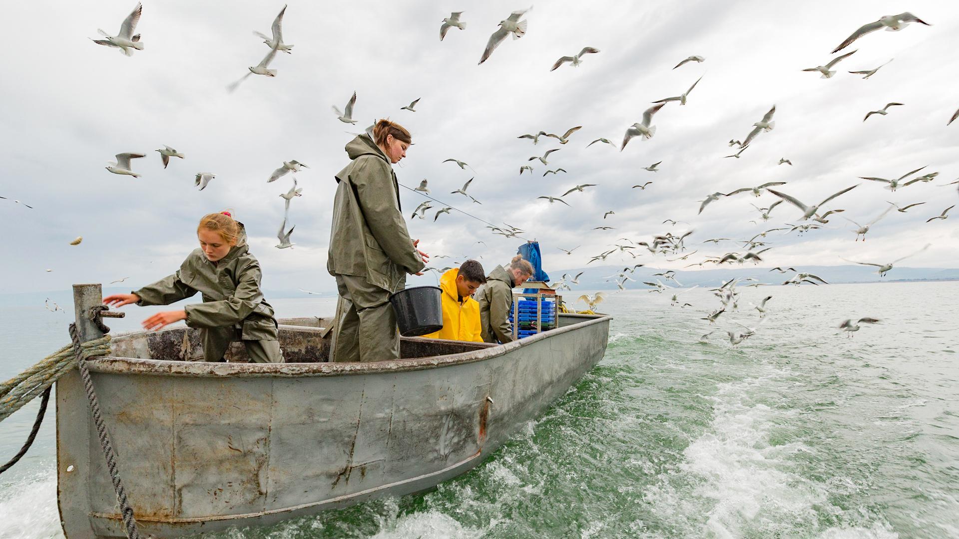 Fishing in Galilee