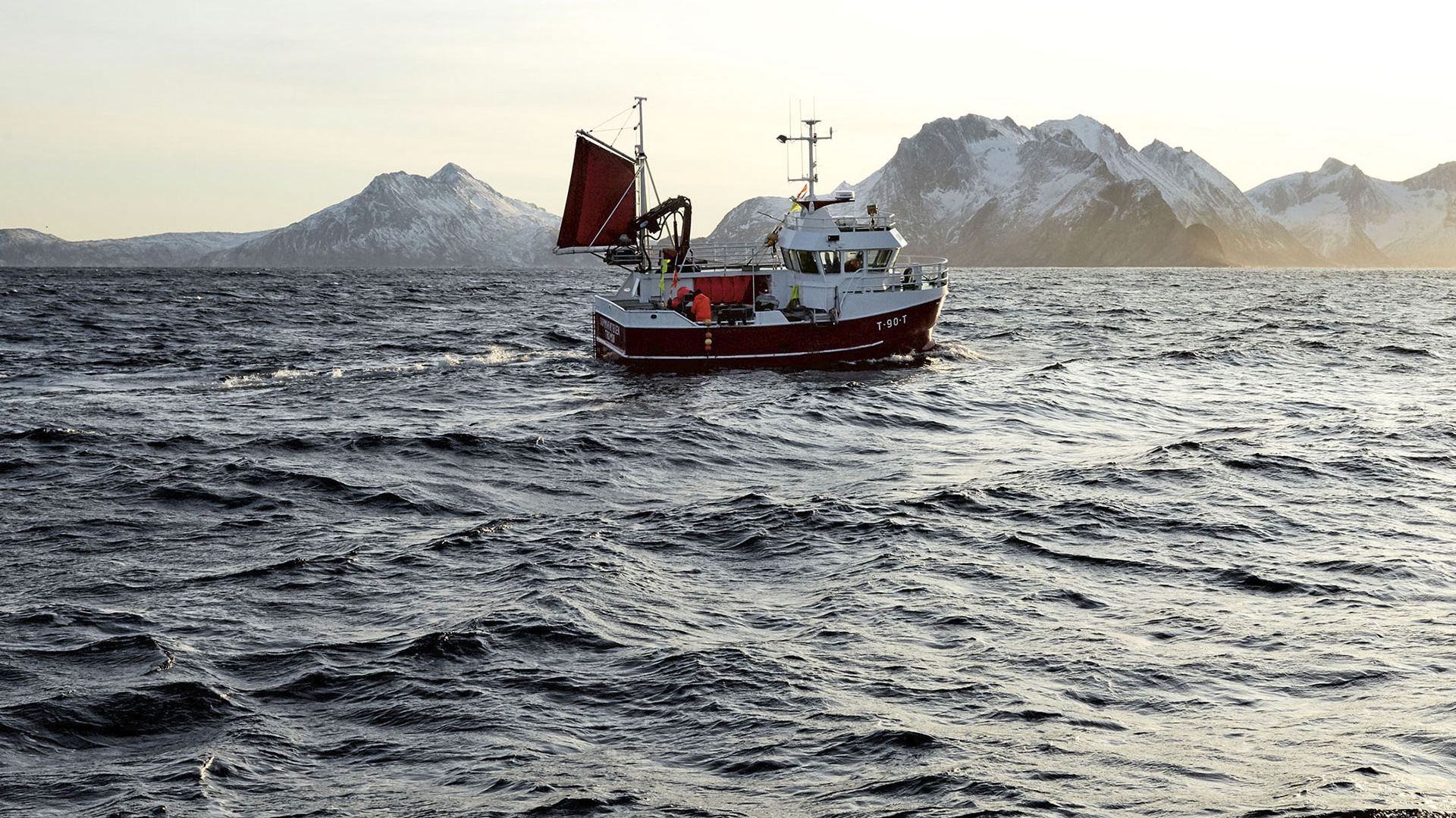 A Skrei fishing boat in northern Norway (photograph by Steve Lee)