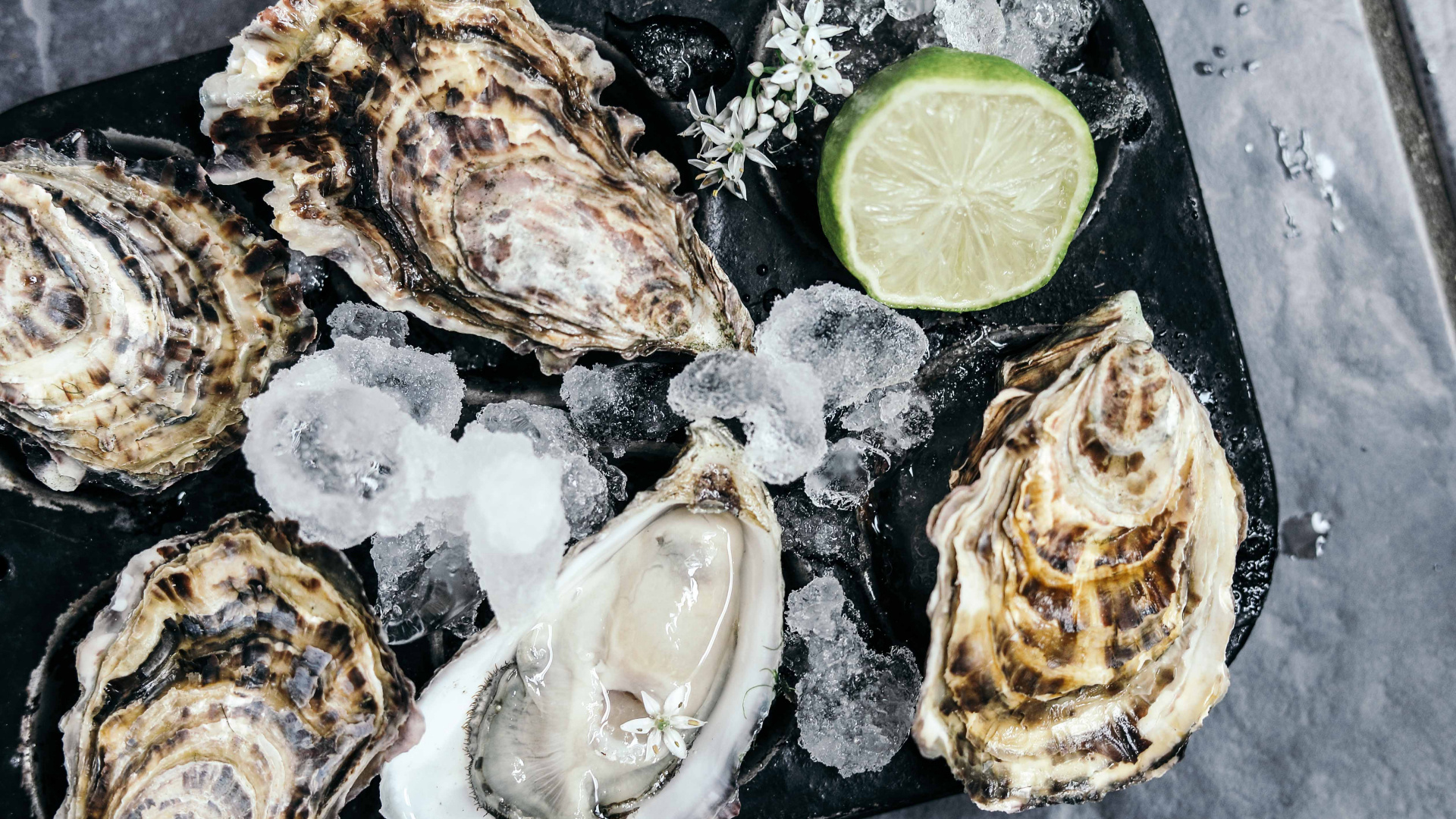Win two places to an invite-only 'Ostrelier' oyster masterclass