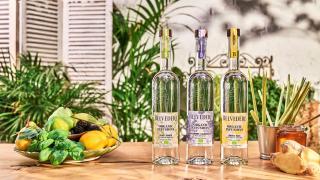 Spritz recipes: Belvedere Organic Infusions