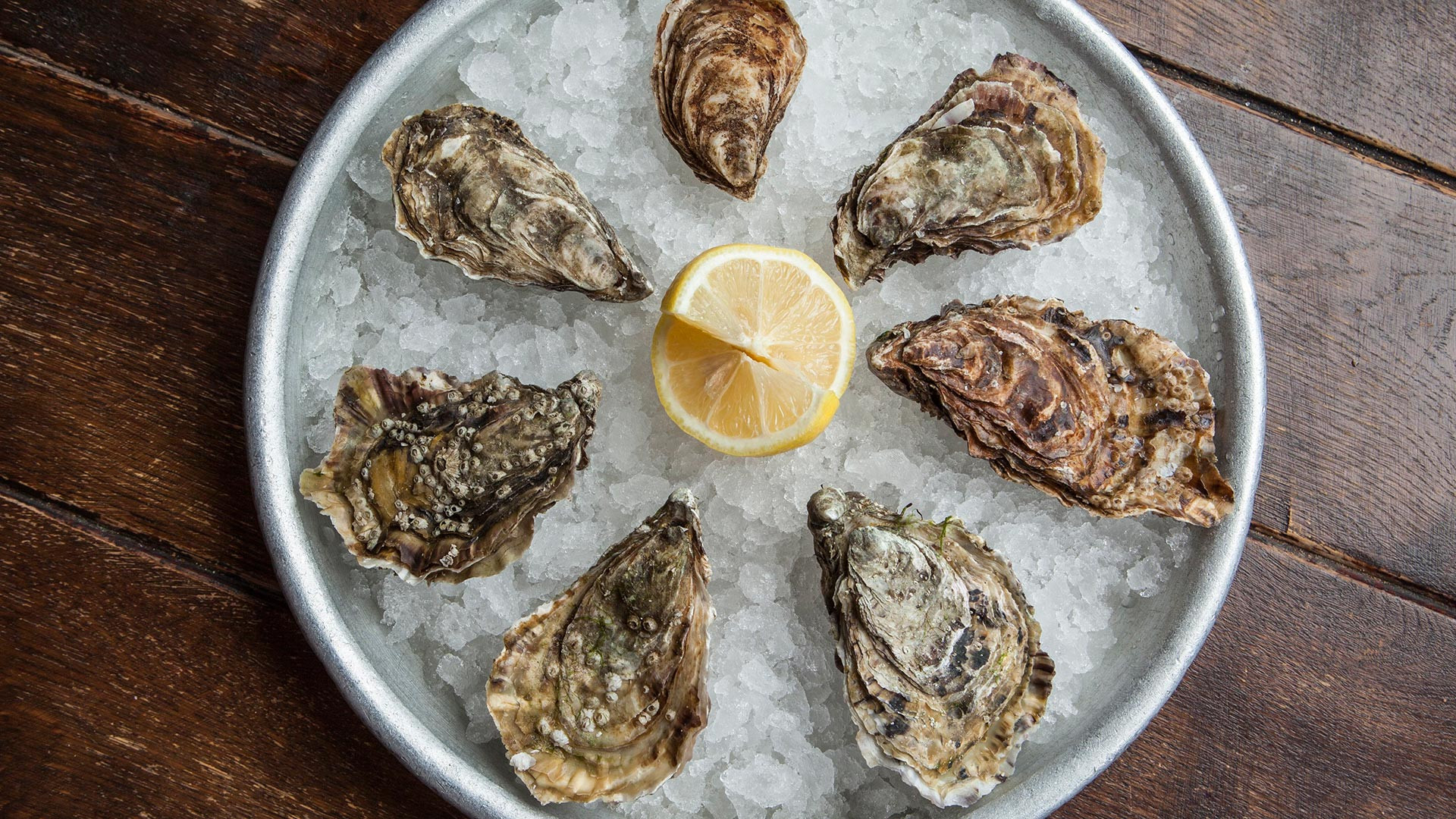 Oysters at Wright Bros