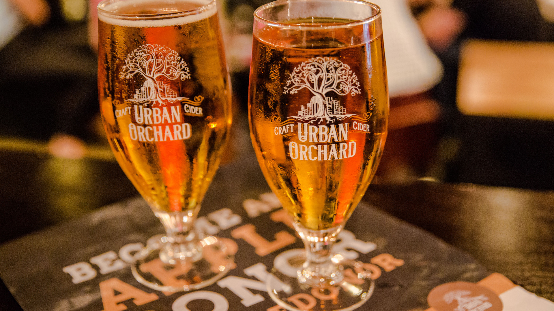 New-school cider: Urban Orchard