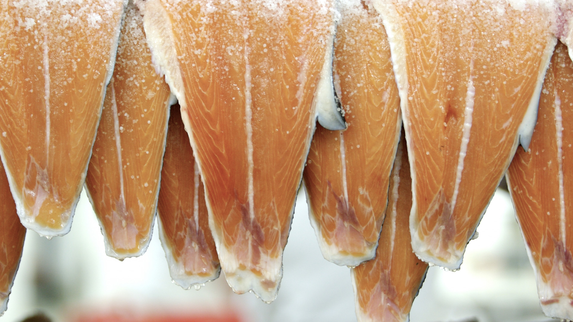 Old-school smoked fish: H. Forman & Son