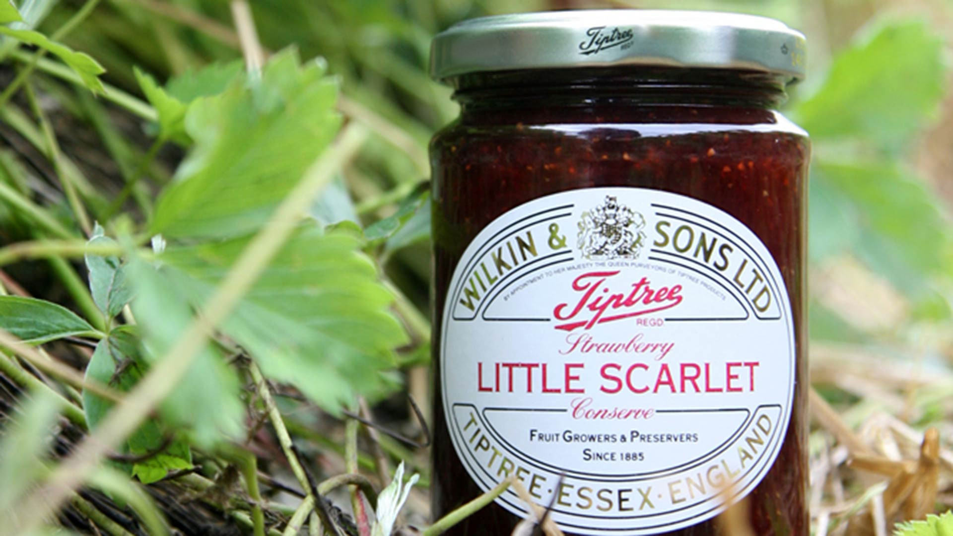 Old-school jam: Tiptree