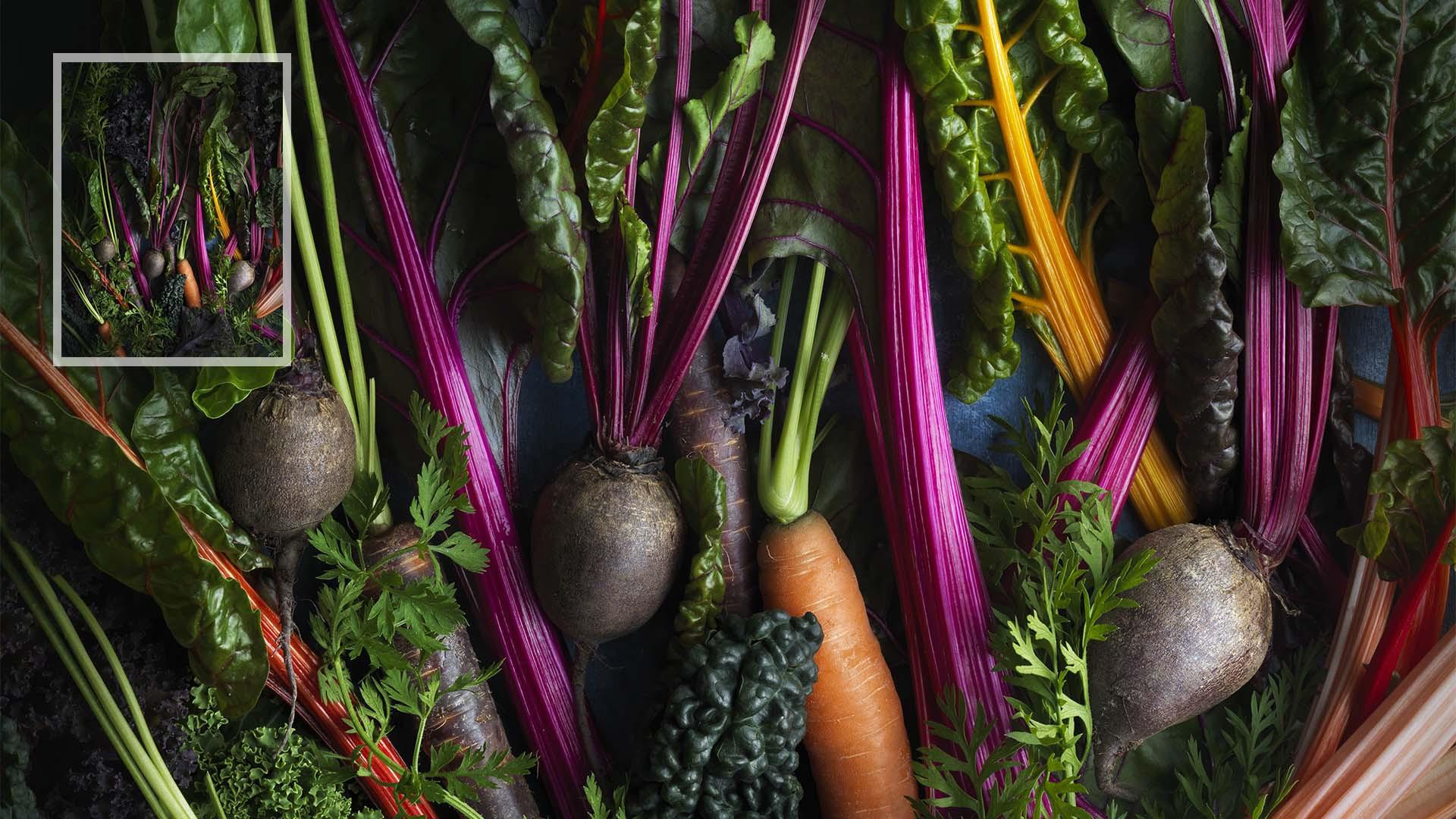 Jonathan Gregson – 'Vegetables'