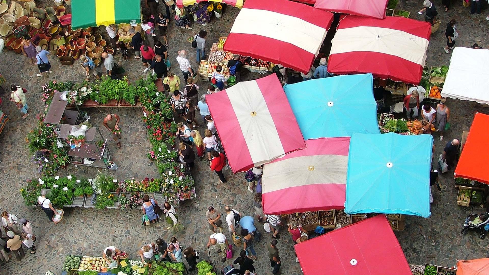 Azalea Dalton – 'Villefranche Market'