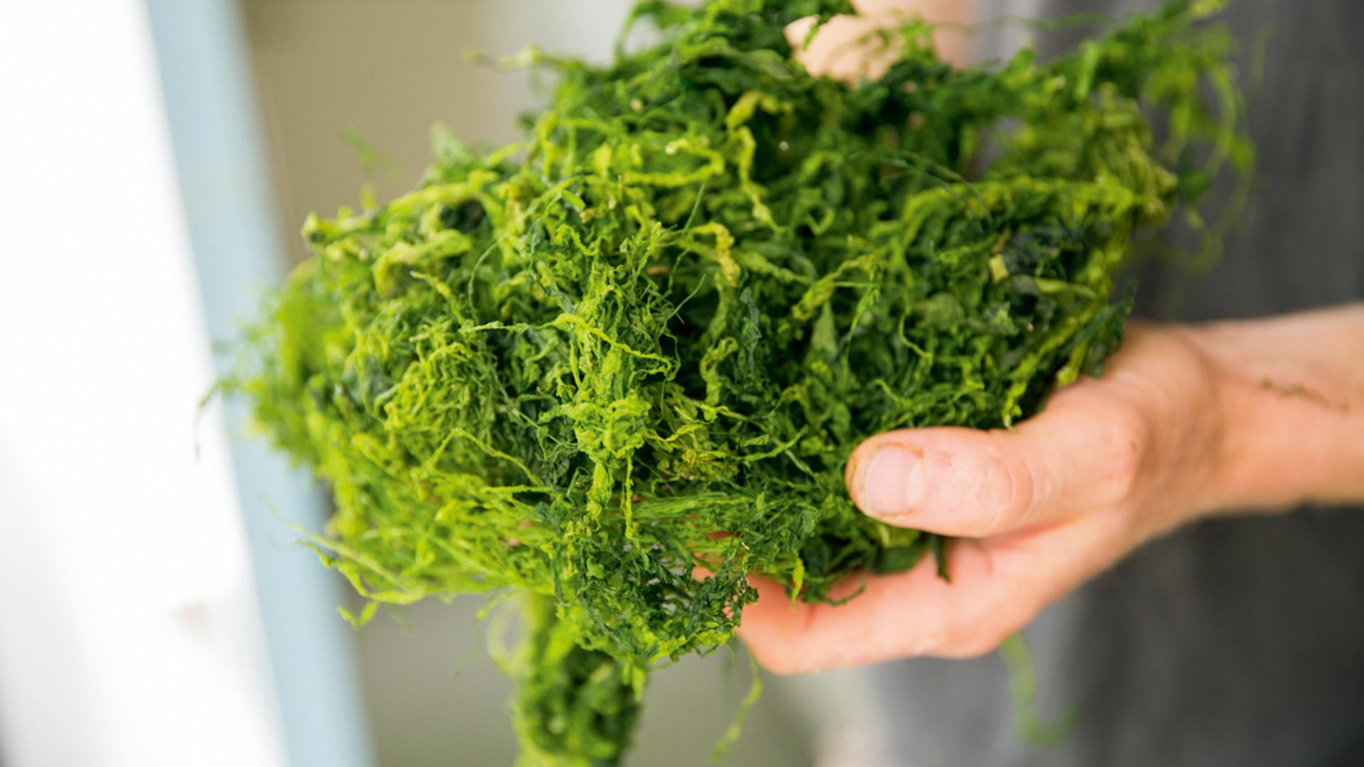 Sea Greens seaweed