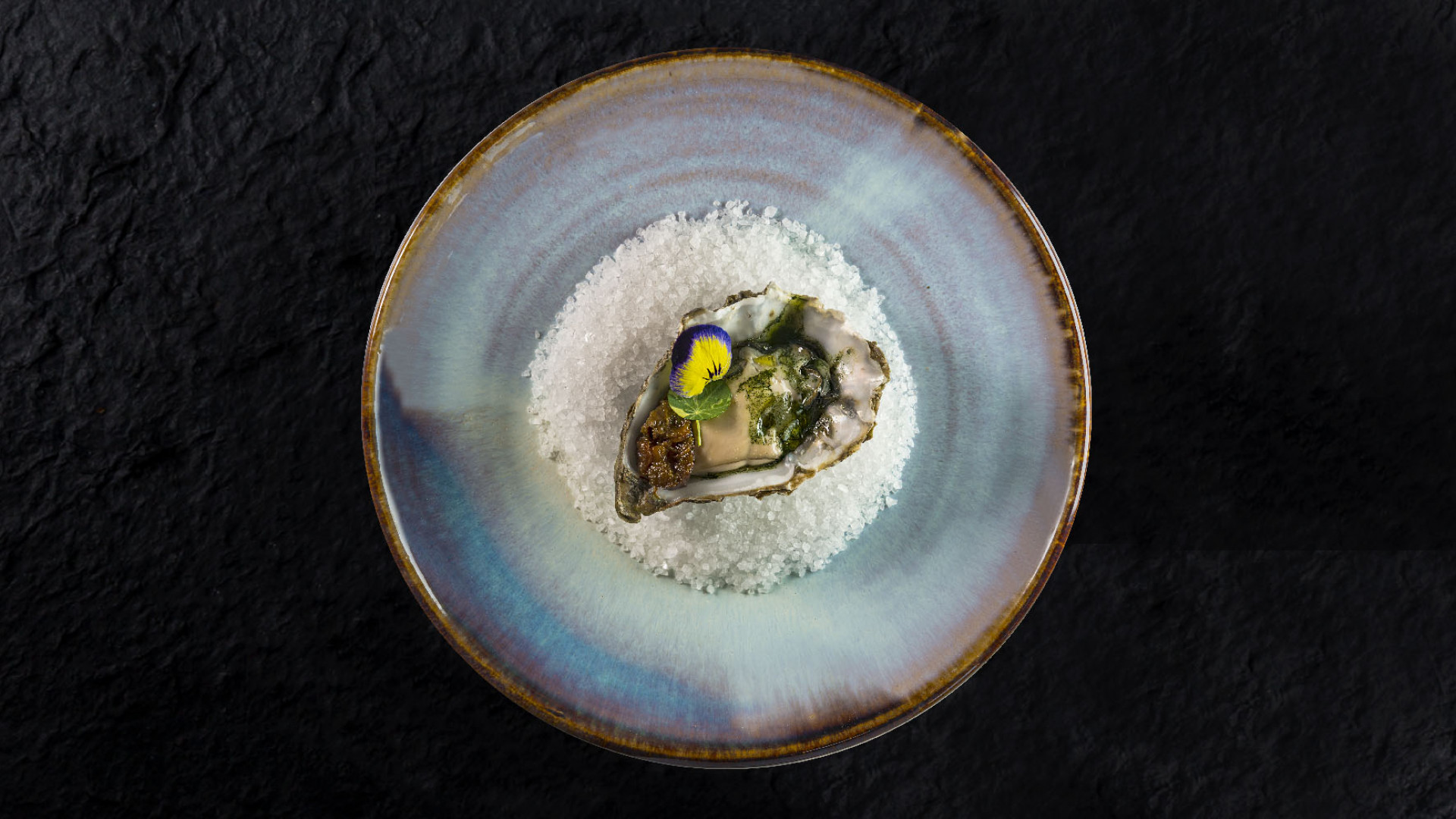 Oyster dish from Rigo