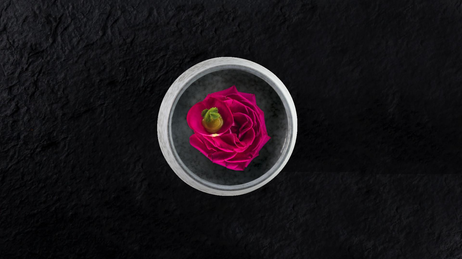 Rose dish from Rigo