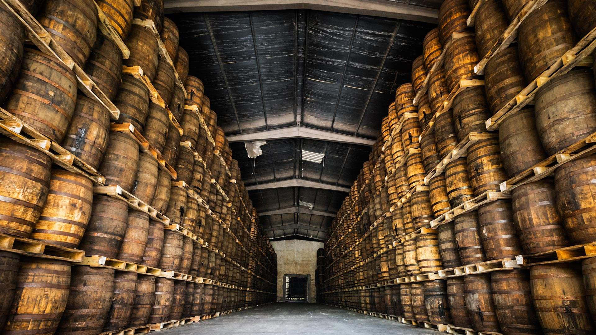 Inside one of Ron Abuelo's bodegas where the rum rests in barrels until it's matured
