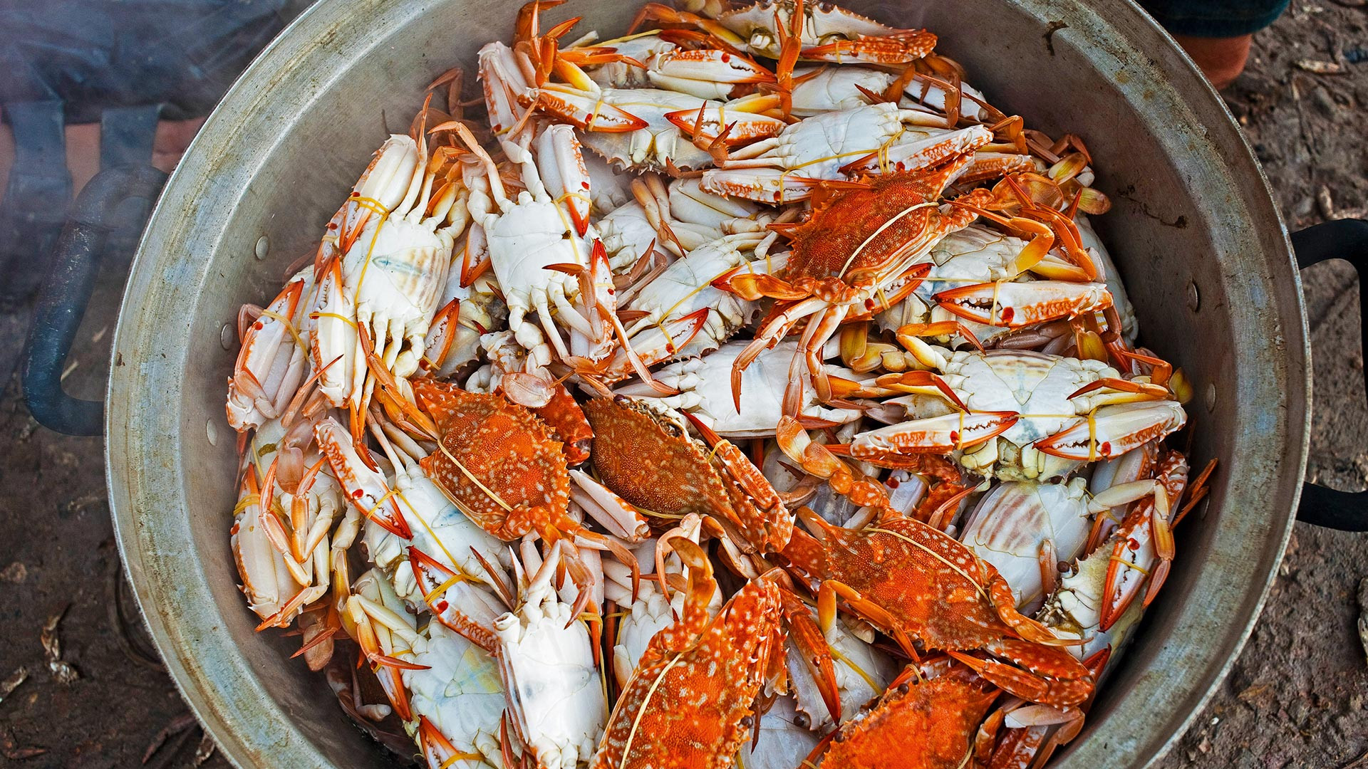 The abundance of superlative crab in Kep has turned the sleepy seaside town into a food destination