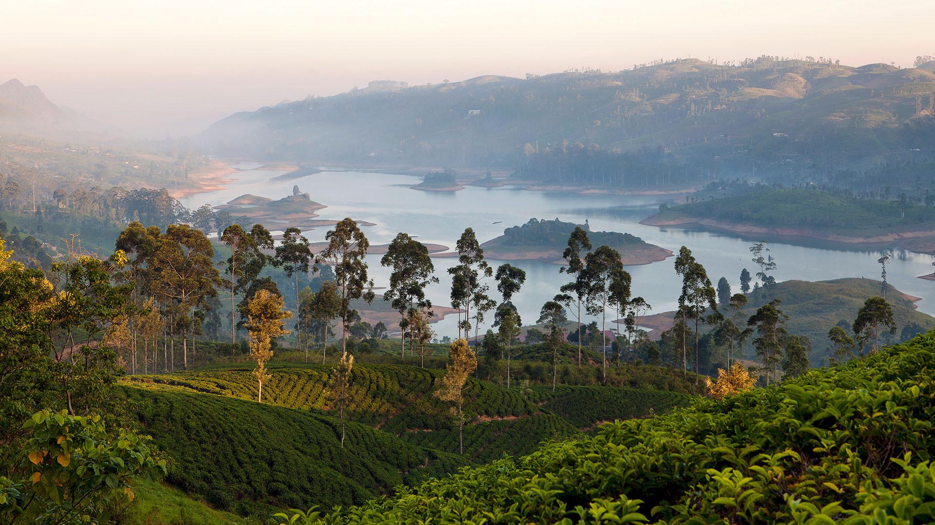 Lake Castlereagh in Sri Lanka's tea country