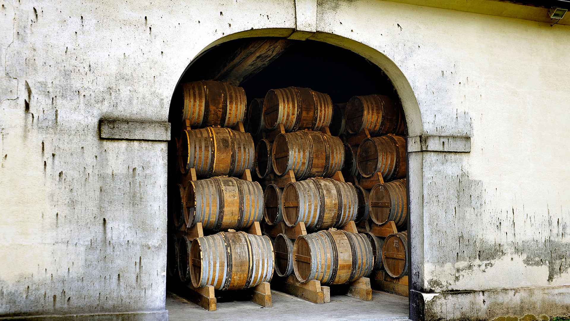 The barrel room at ABK6