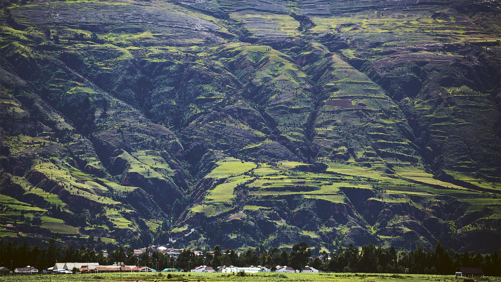 The mountainous Andean region