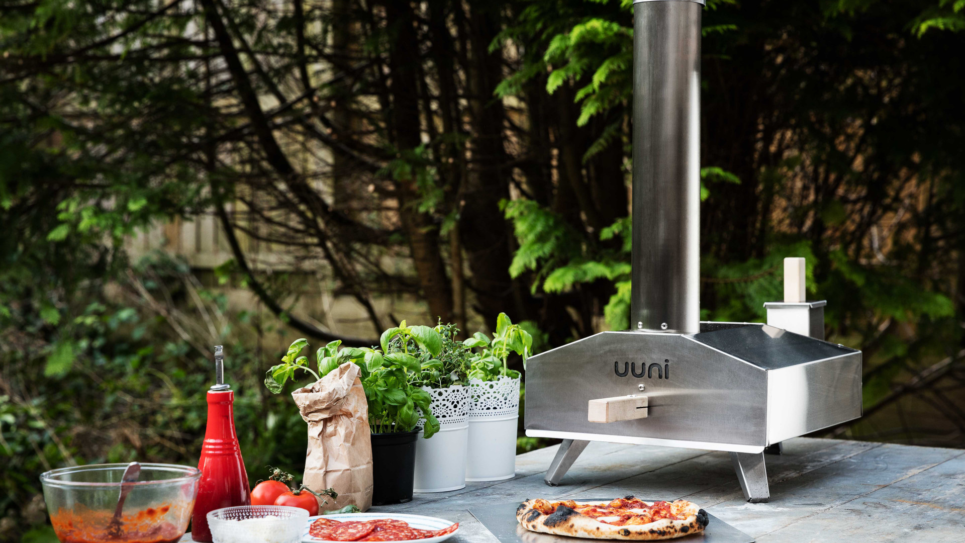 Ooni 3 wood fired oven