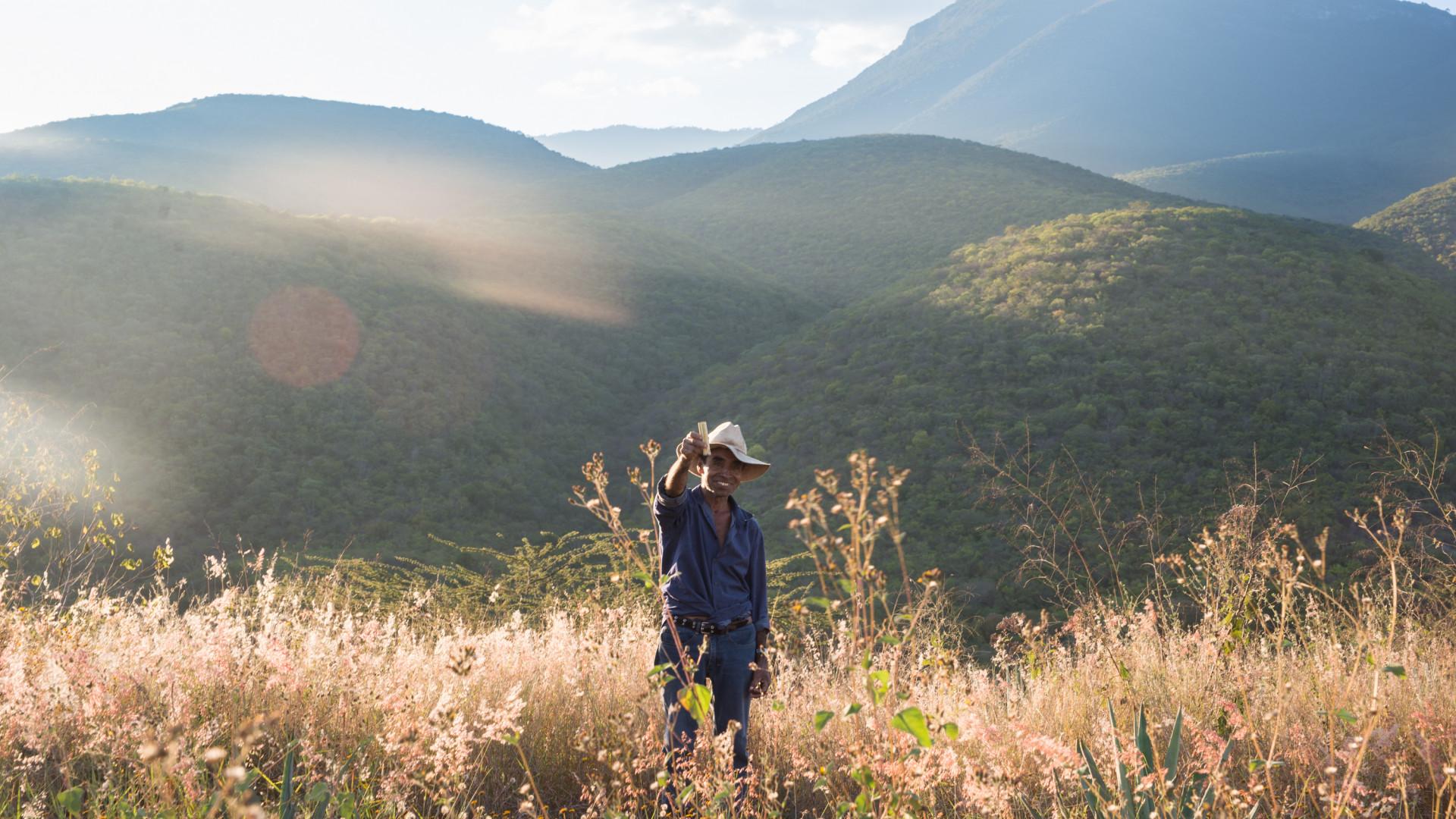 A mezcalero in the fields outside Oaxaca