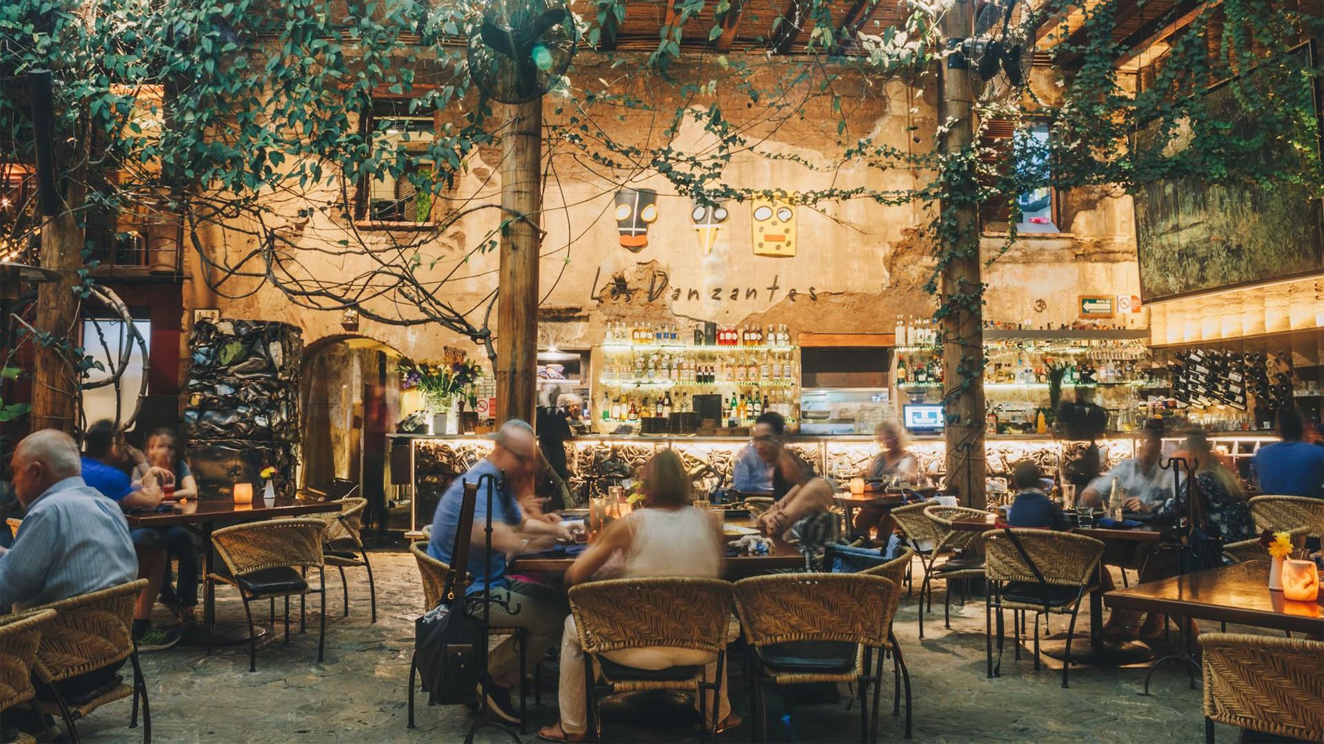 Los Danzantes restaurant in Oaxaca City, Mexico