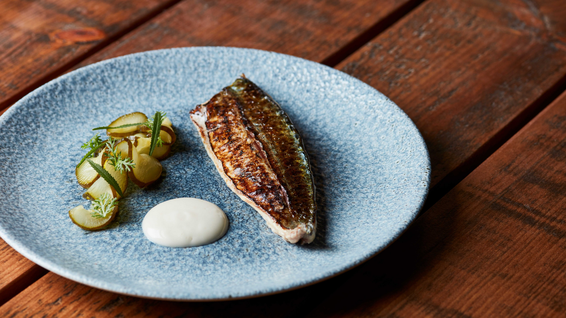 Grilled mackerel, oyster mayonnaise, and pickled cucumber at Lino, Clerkenwell