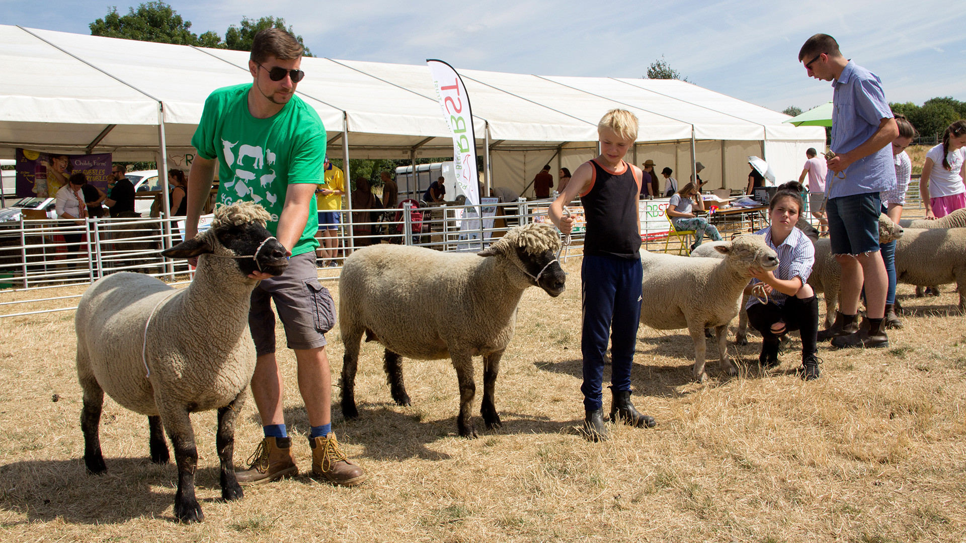 The Mudchute Agricultural Show