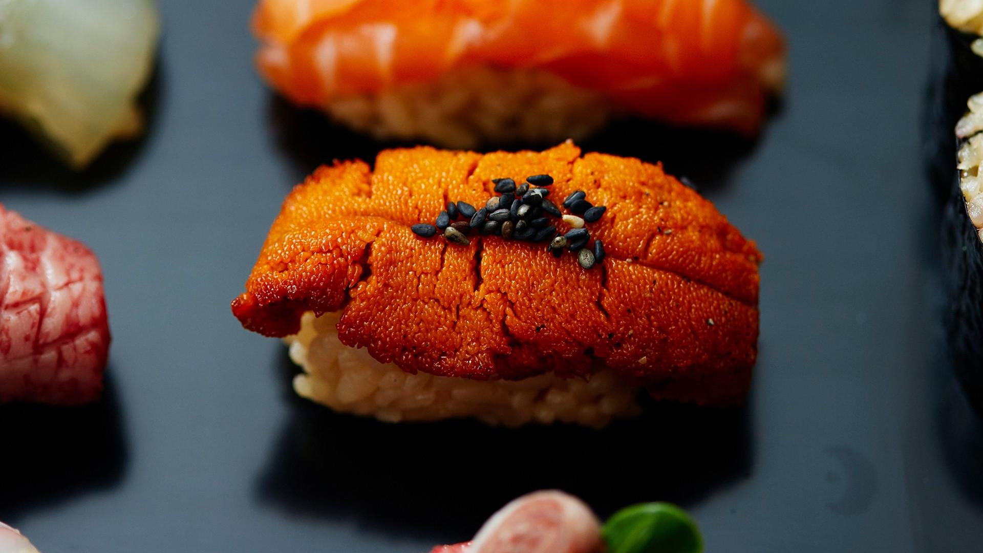 Akira sea urchin