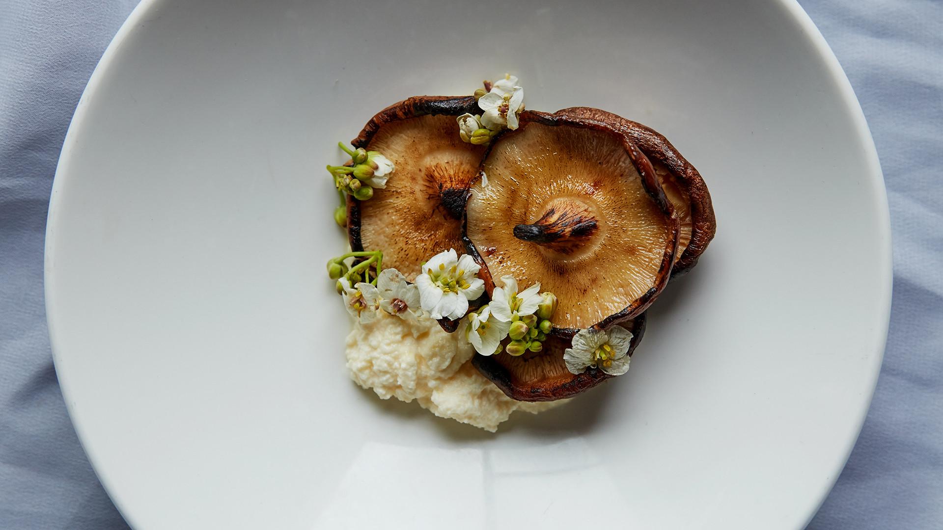 Shiitake mushrooms, ricotta and mushroom garum at Silo