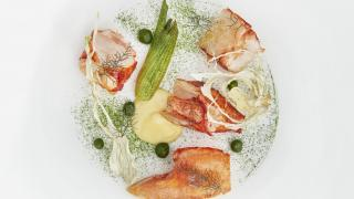 Lobster, yuzu, fennel and coriander