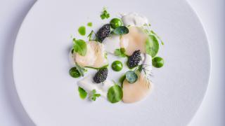Scallops, oyster, caviar