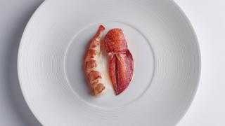 Lobster, wagyu fat