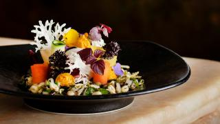 Raw pickled vegetable salad, carrot hummus and smashed grains