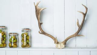 Sustainable restaurants London: Native