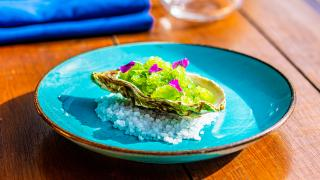 Moio, Clapton: restaurant review – fresh apple and sorrel granita topped Cumbrian oysters