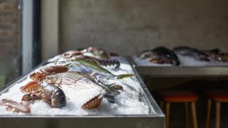 London's best seafood restaurants – The Sea, The Sea