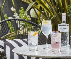 The Botanist Gin Roodftop pop-up