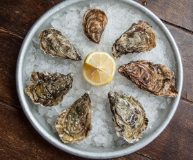 Oysters at the Wright Brothers