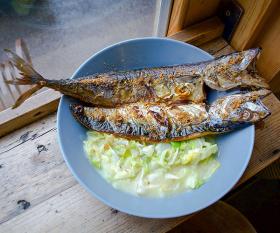 L.C.'s mackerel