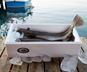 Skrei, packaged and prepared (photograph by Steve Lee)