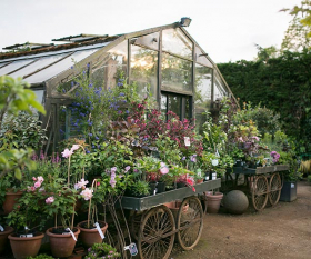The greenhouse at Petersham Nurseries. Photograph by Marimo Images