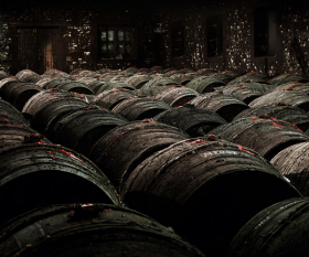 Casks ageing in the cellar at single-estate cognac house Frapin