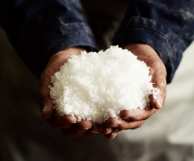 Freshly harvested Maldon salt