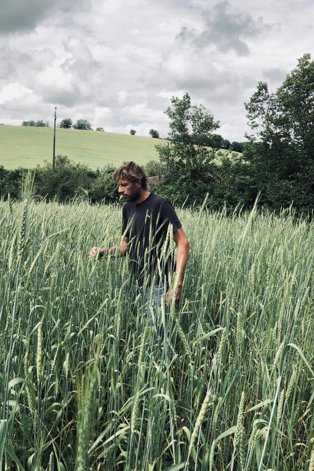Summer in London 2021 Wildfarmed Grain's Andy Cato