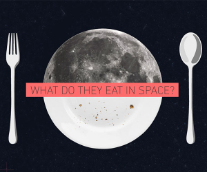 Labely's space food infographic widget