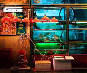 Fish tanks and lights outside one of Macau's seafood restaurants