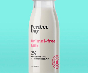 Animal-free milk by Perfect Day