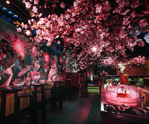 Win a meal for two at ROKA