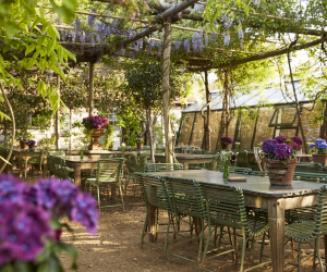 London's best outdoor restaurants | Petersham Nurseries in Richmond